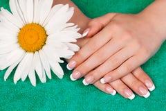 美好的女性法国现有量修指甲 免版税库存照片