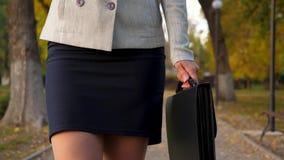 美好的女性腿步行沿着向下大道 裙子和裤袜的女商人在秋天公园走与