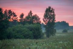美好的威严的自然在立陶宛 免版税库存照片