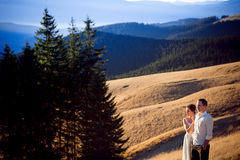美好的婚礼夫妇享受山风景 库存照片