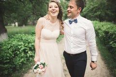 美好的婚礼夫妇在公园 亲吻并且互相拥抱 免版税库存图片