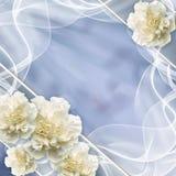 美好的婚礼背景 免版税图库摄影
