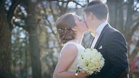 美好的婚礼年轻夫妇在公园 股票录像