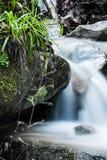 美好的宏指令关闭在河与流动在秋天风景的缎花露水的溪石头 免版税库存照片