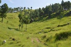 美好的小山风景balakot巴基斯坦 库存图片