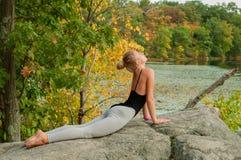 美好的少妇实践的瑜伽画象  图库摄影