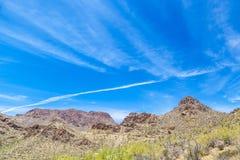 美好的山沙漠风景用仙人掌 免版税图库摄影