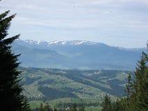 美好的山风景和森林 免版税库存照片