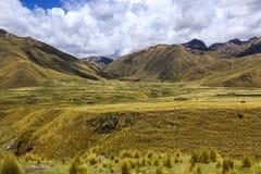 美好的山风景和谷沿路库斯科Pu 免版税库存图片
