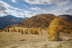 美好的山风景如被看见从Nockalm路,奥地利 库存图片