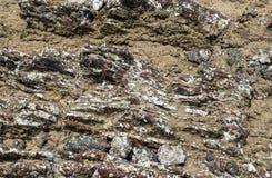 美好的岩石背景 免版税库存照片