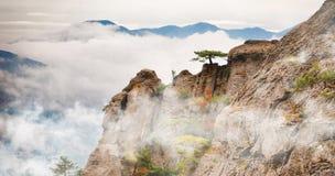 美好的岩石视图 免版税库存图片