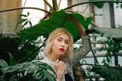 美好的年轻白种人女性模型围拢与热带 免版税库存图片