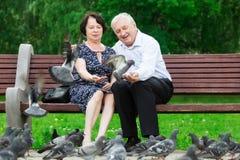美好的年长夫妇坐长凳 库存照片