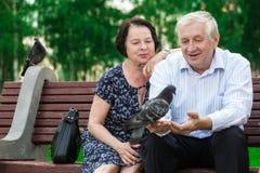 美好的年长夫妇坐长凳 免版税库存图片