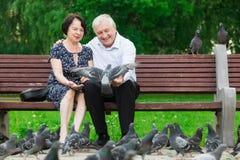 美好的年长夫妇坐长凳 库存图片