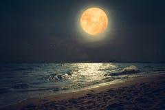 美好的幻想热带海海滩 满月超级月亮 图库摄影