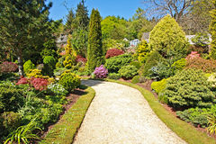 美好的庭院春天 免版税库存图片