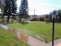 美好的庭院草树上小屋watter 图库摄影