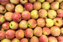 美好的开胃果子背景用苹果 库存图片