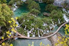 美好的当前新鲜的绿色plitvice包围植被瀑布瀑布 免版税图库摄影
