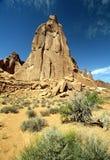 美好的形成种植岩石 库存照片