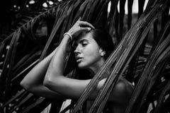 美好的性感的俏丽的深色的妇女夏天热带棕榈树p 免版税图库摄影