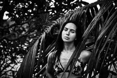 美好的性感的俏丽的深色的妇女夏天热带棕榈树p 免版税库存图片