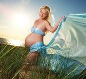 美好的户外孕妇 免版税库存图片