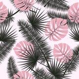 美好的无缝的与热带棕榈叶的传染媒介花卉夏天样式背景 为墙纸,网页完善 向量例证