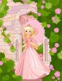 美好的日公主夏天 库存图片