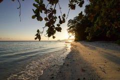美好的日出在巴丹塔岛海岛,王侯ampat 免版税库存照片