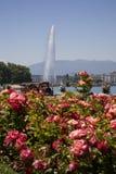 美好的日日内瓦湖夏天 库存图片