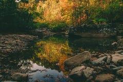 美好的日秋天 图库摄影