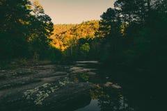 美好的日秋天 库存照片