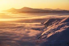 美好的日落亮光启迪与用雪盖的公平的树,高山的美丽如画的风景 冷淡的有雾的天 免版税库存照片