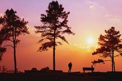 美好的日落剪影自然背景 库存照片