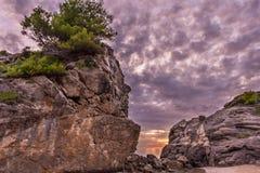 美好的日落和一个大岩石与树在上面在中央科孚岛希腊海岸  免版税图库摄影
