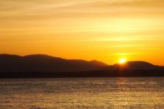 美好的日落在金黄庭院射击了在西雅图,华盛顿美国停放 免版税库存图片