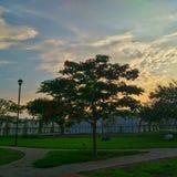 美好的日落在México市 免版税库存图片