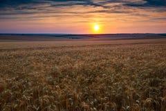 美好的日落在whetaen领域,与云彩的五颜六色的天空 图库摄影