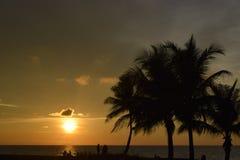 美好的日落视图 库存照片