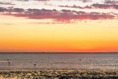 美好的日落风景金黄多云天空和海洋 免版税库存图片
