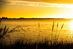 美好的日落,鸭子游泳 库存图片