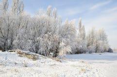 美好的早晨河冬天 免版税库存图片