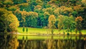 美好的早期的秋天欧洲森林大局葡萄酒照片  图库摄影