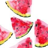 美好的明亮的五颜六色的可口鲜美美味的成熟水多的逗人喜爱的可爱的红色夏天秋天新点心切片西瓜发出答答声 皇族释放例证