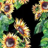美好的明亮的图表与绿色的秋天美妙的五颜六色的橙黄草本花卉向日葵离开样式 库存例证