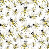 美好的明亮的图表抽象逗人喜爱的可爱的蜂蜜蜂的夏天五颜六色的样式 库存例证