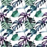 美好的明亮的热带逗人喜爱的可爱的美妙的棕榈水彩的夏威夷花卉草本海滩夏天青绿的紫罗兰色样式 库存例证